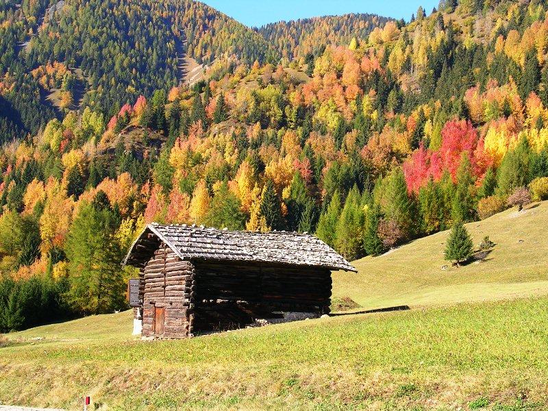 bellamonte predazzo valle di fiemme.it ph mauro morandini Bellamonte
