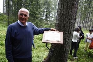 salvatore accardo bosco che suona val di fiemme 300x200 BOSCO CHE SUONA 2011: Salvatore Accardo sceglie un abete solitario
