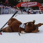 Anche lo Skiri cade sfinito nella salita finale del Tour de Ski 2012 150x150 Le foto del Carnevale dei Matoci di Valfloriana