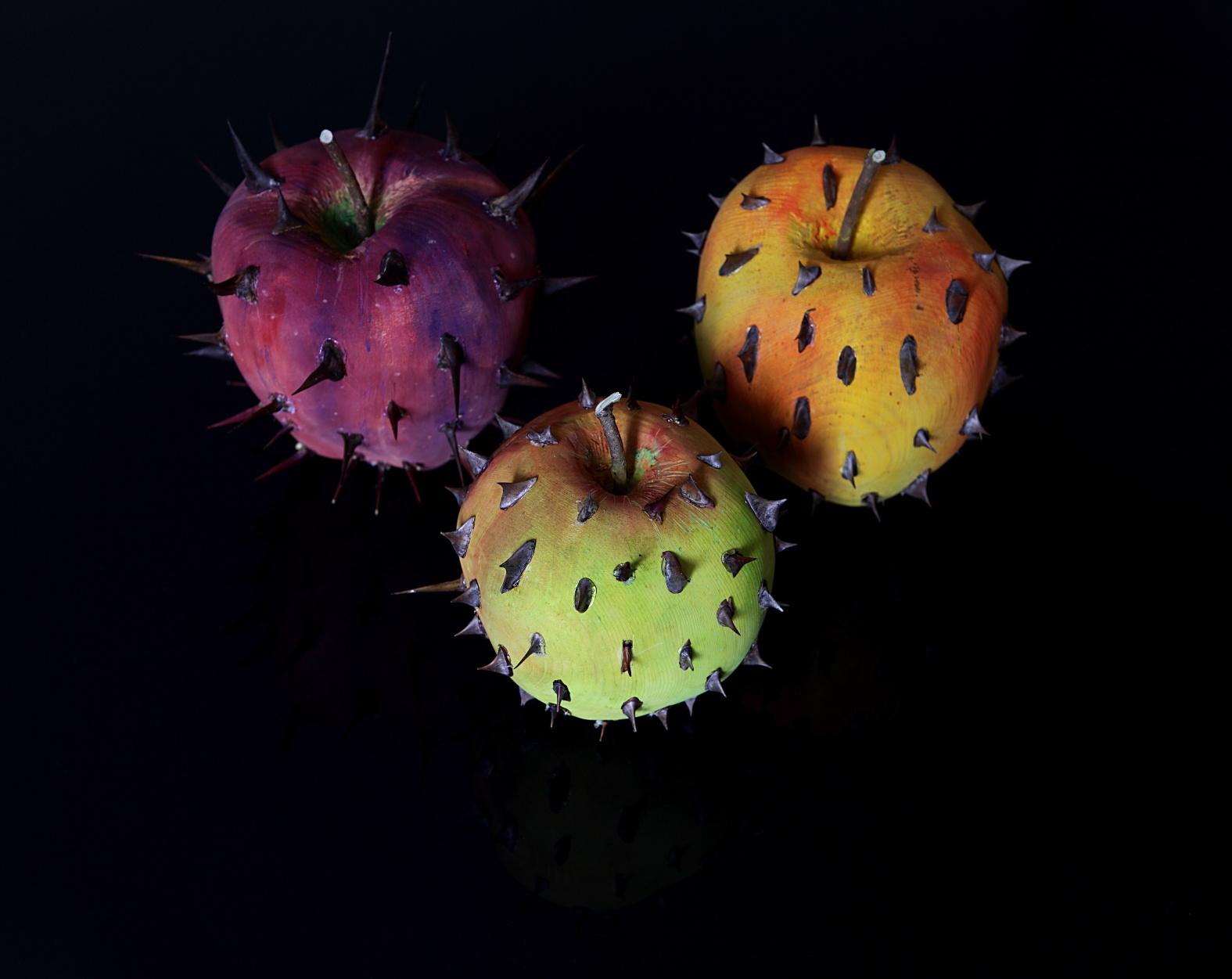 Frutti proibiti di Marco Nones (cirmolo e rose di spina)