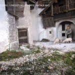 tesero i presepi nelle corte natale 2012 valle di fiemme it17 150x150 I Presepi di Tesero