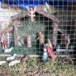 tesero i presepi nelle corte natale 2012 valle di fiemme it54 150x150 I Presepi di Tesero