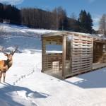 foto 150x150 Guest Card Trentino 2014: Fiemme: CIAK si gira ... con un euro!