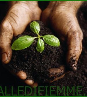 compost gratis fiemme