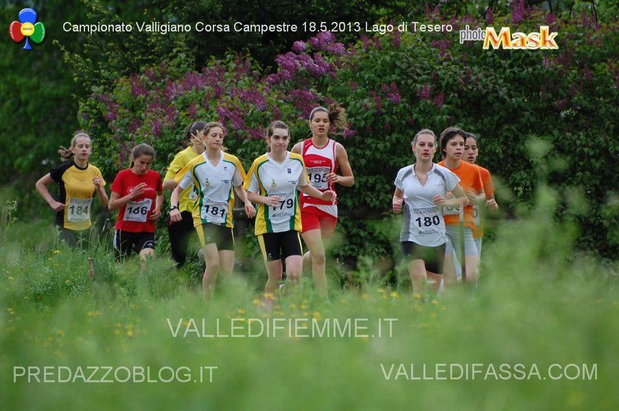 campionato valligiano corsa campestre fiemme 2013 ph alberto mascagni 25 Foto