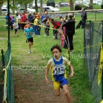 campionato valligiano corsa campestre fiemme capriana 2.6.13 ph mascagni12 150x150 Le foto della 2° Prova del Valligiano a Capriana 2 giugno 2013
