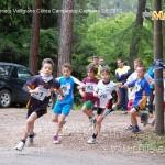 campionato valligiano corsa campestre fiemme capriana 2.6.13 ph mascagni3 150x150 Le foto della 2° Prova del Valligiano a Capriana 2 giugno 2013