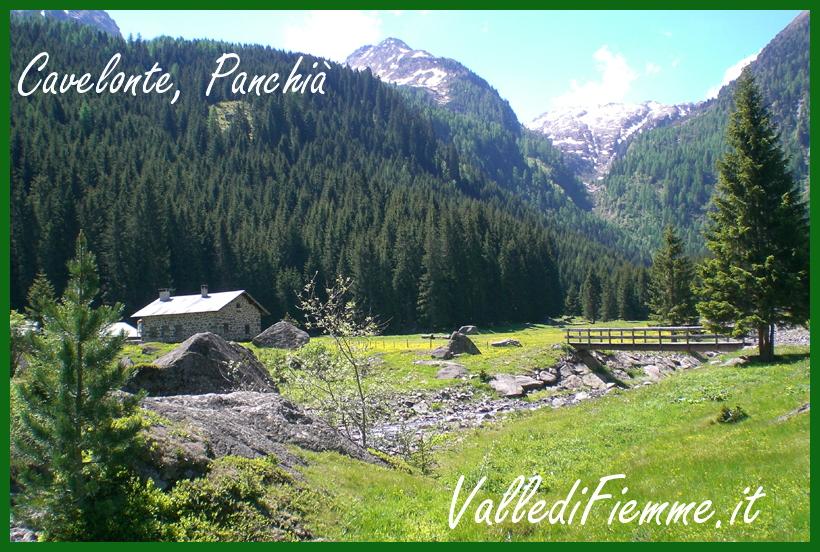 cavelonte panchia valle di fiemme Panchià, trovato a Cavelonte un corpo senza vita da alcuni passanti