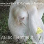 Caran de sti ani 2013 valle di fiemme ph sonia boschetto69 150x150 Carano le foto della 3° edizione de Caran de sti ani 2013