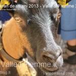 Caran de sti ani 2013 valle di fiemme ph sonia boschetto8 150x150 Carano le foto della 3° edizione de Caran de sti ani 2013