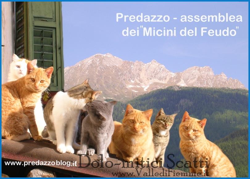 assemblea dei micini del feudo predazzo Dolo mitici Scatti
