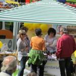 festa del volontariato fiemme fassa maso toffa 22.9.13135 150x150 Festa del Volontariato di Fiemme e Fassa   Le Foto