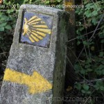 100 piedi verso Santiago de Compostela pino dellasega orizzonti di riflessione139 150x150 100 piedi in cammino verso Santiago de Compostela