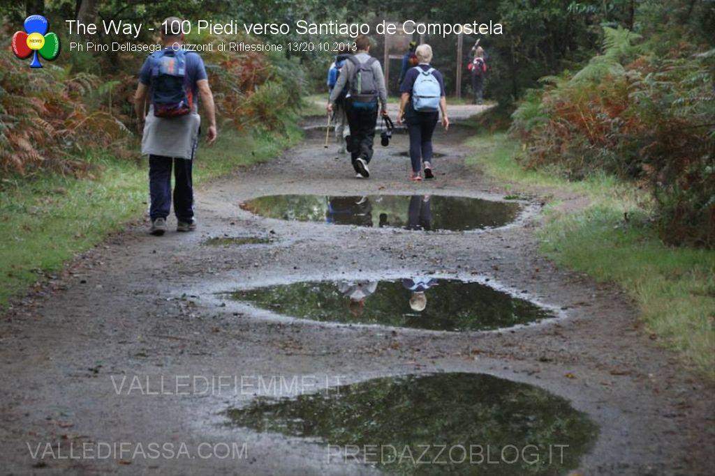 100 piedi verso Santiago de Compostela pino dellasega orizzonti di riflessione310 100 piedi in cammino verso Santiago de Compostela