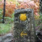 100 piedi verso Santiago de Compostela pino dellasega orizzonti di riflessione73 150x150 100 piedi in cammino verso Santiago de Compostela
