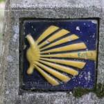 100 piedi verso Santiago de Compostela pino dellasega orizzonti di riflessione96 150x150 100 piedi in cammino verso Santiago de Compostela