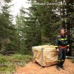 ManovraBoschiva Daiano11 150x150 Maxi manovra boschiva a Daiano per i Vigili Volontari di Fiemme