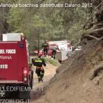 ManovraBoschiva Daiano15 150x150 Maxi manovra boschiva a Daiano per i Vigili Volontari di Fiemme