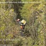 ManovraBoschiva Daiano19 150x150 Maxi manovra boschiva a Daiano per i Vigili Volontari di Fiemme