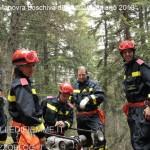 ManovraBoschiva Daiano30 150x150 Maxi manovra boschiva a Daiano per i Vigili Volontari di Fiemme