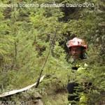 ManovraBoschiva Daiano9 150x150 Maxi manovra boschiva a Daiano per i Vigili Volontari di Fiemme