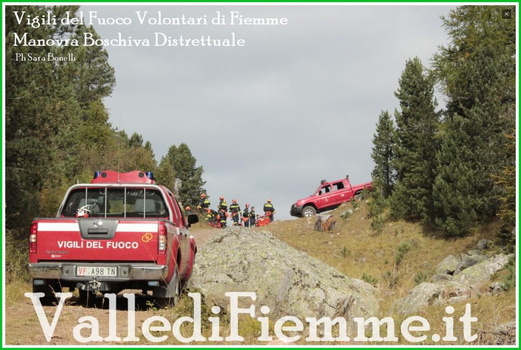 manovra boschiva vigili fuoco fiemme 1024x688 Maxi manovra boschiva a Daiano per i Vigili Volontari di Fiemme