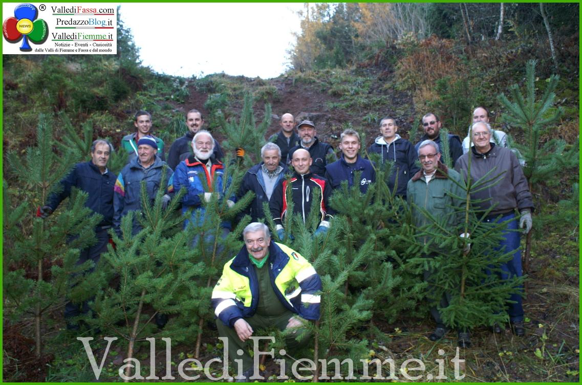 alberi natale fiemme cavalese Cavalese e Masi, un albero ed un sorriso per Natale