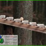 xilofono di legno nel bosco fiemme 150x150 Fiemme è il set delle riprese di «Alberi che camminano» con Erri de Luca