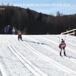 minimarcialonga e marcialonga joung 25.1.2014119 150x150 Minimarcialonga e Marcialonga Young 2014 in 230 foto