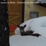 mamma ho perso la baita nevicate inverno 201417 150x150 Mamma ho perso la Baita!!  Raccolta fotografica di baite innevate