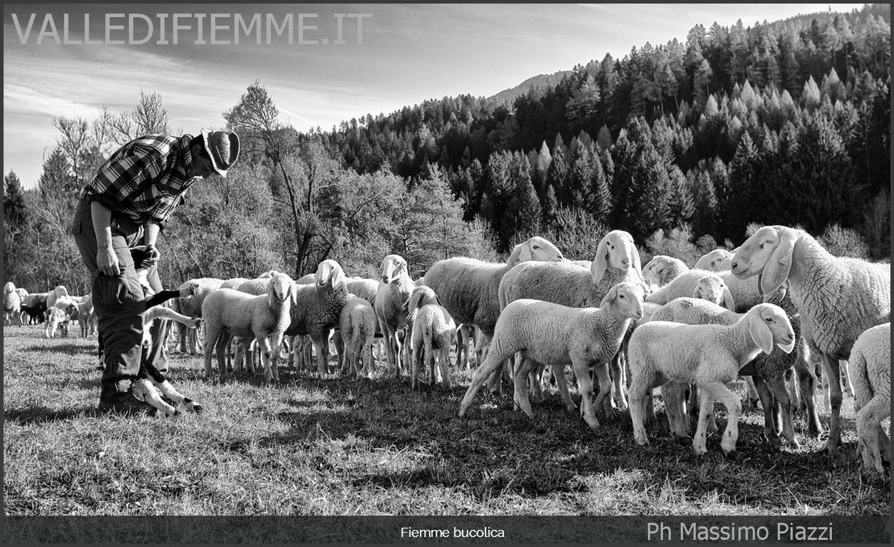 massimo piazzi ph 1 valle di fiemme Fotografare l'autenticità: Massimo Piazzi