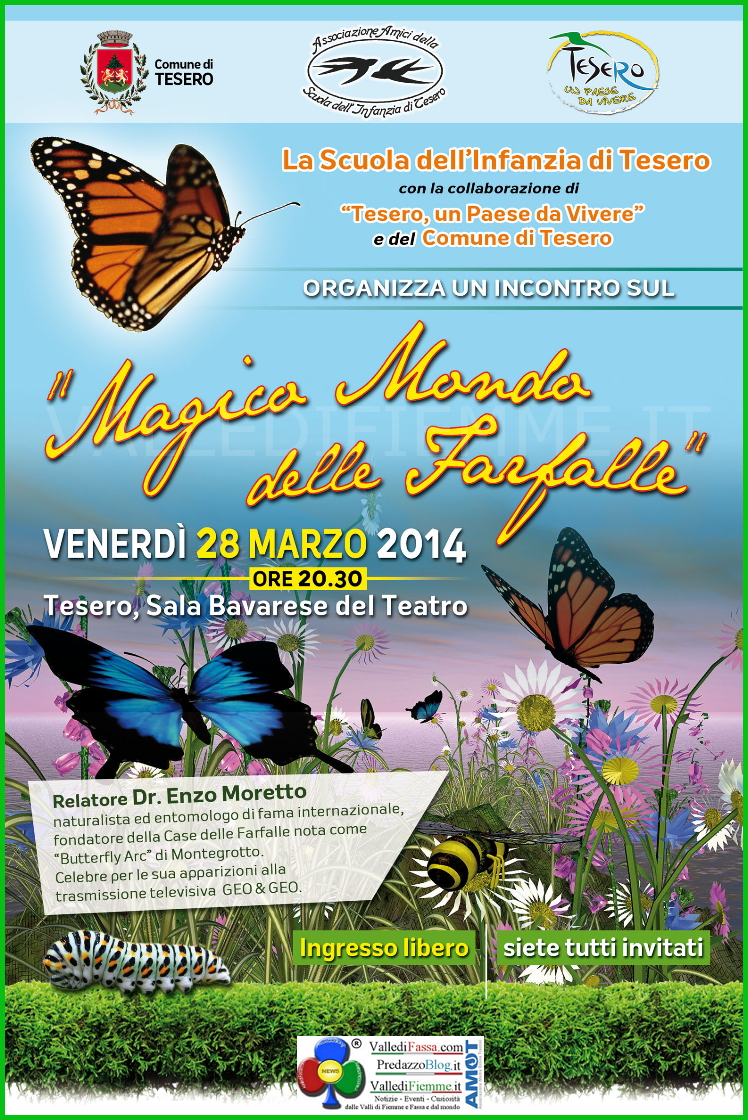 magico mondo delle farfalle tesero fiemme Tesero, Il Magico Mondo delle Farfalle con Enzo Moretto