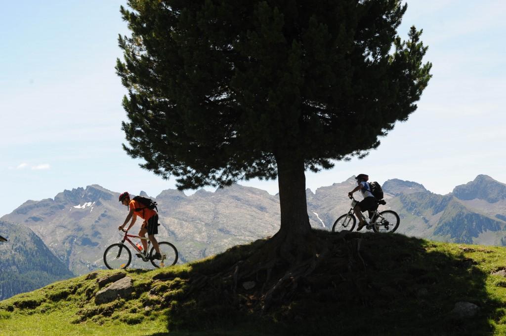 bici fiemme 3 orler 1024x681 BIKE 2014: in Val di Fiemme otto eventi a due ruote, salite dolomitiche, tour ed escursioni in e bike