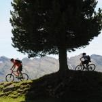bici fiemme 3 orler 150x150 Fiemme, LA SIGNORA degli ANELLI... CICLABILI   domenica 18 agosto