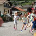 campionato valligiano fiemme 2014 31 maggio molina di fiemme 4 150x150 Campionato Valligiano Corsa Campestre, classifiche e foto da Molina di Fiemme
