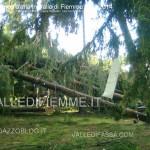 tromba daria 23.6.2014 in valle di fiemme ziano masi7 150x150 Trombe daria in Valle di Fiemme, danni a Ziano e Masi di Cavalese