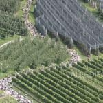 foto la vecia ferovia 2014 valle di fiemme10 150x150 Rabensteiner e Gaddoni frecce rosse della Vecia Ferovia   Foto, video e classifiche