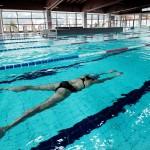 piscina cavalese 150x150 Cavalese, saluto da parte dellAssessore allo Sport e di SAGIS alla forte squadra francese di nuoto di Nizza