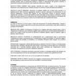 lista autonimisti cavalese masi elezioni maggio 2015 valle di fiemme37 150x150 Lista PATT e Autonomisti Cavalese Masi   candidato sindaco Mario Rizzoli