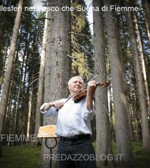Arve Tellesfen nel bosco che suona in valle di fiemme2