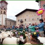 """desmontegada delle capre cavalese 150x150 Arrivano le """"desmontegade de le caore e de le vache"""". Cavalese e Predazzo in festa con una serie di appuntamenti golosi."""