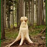 bosco che suona fiemme 1 150x150 BOSCO CHE SUONA 2011: Salvatore Accardo sceglie un abete solitario