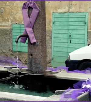 fontana lilla predazzo 1