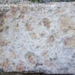Il RespirArt Day 2016 alpe di pampeago fiemme42 150x150 Inaugurate 5 nuove opere in quota nel Parco d'Arte RespirArt