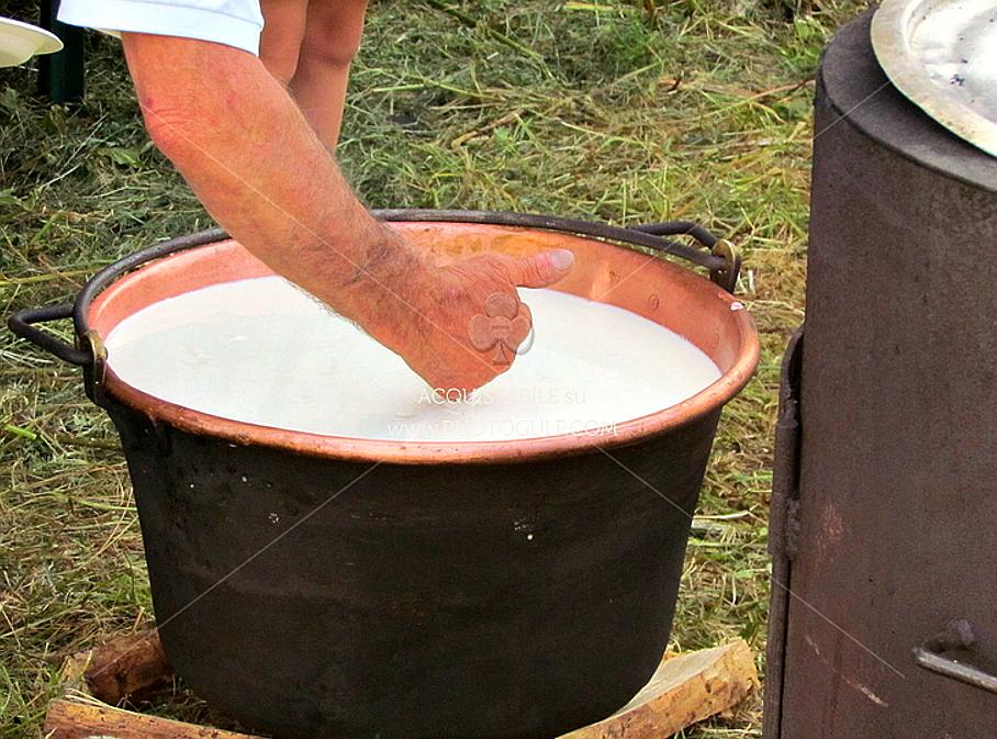 latte formaggio Latte in Festa, Il Festival del buon latte trentino!