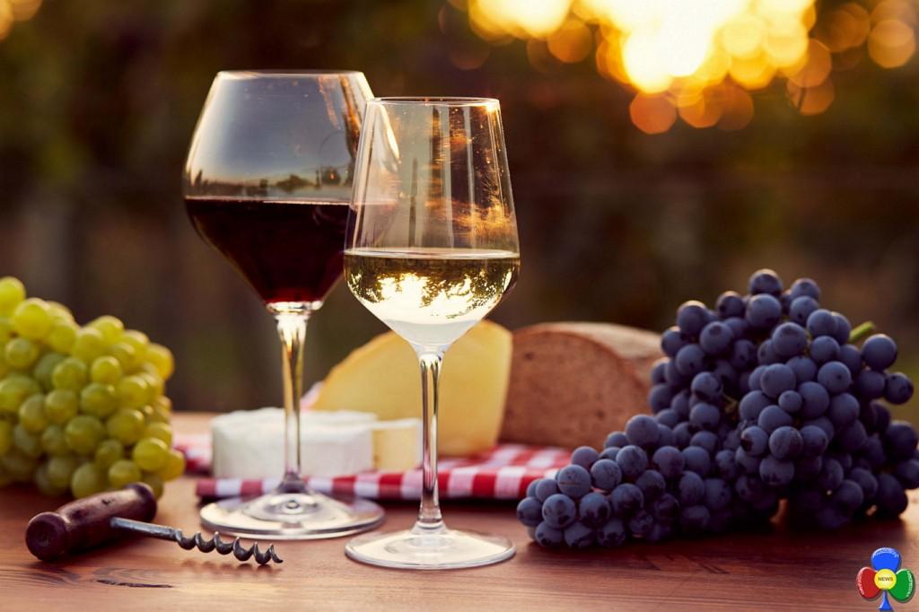 LIncanto del vino a Capriana 1024x682 L'incanto del vino a Capriana