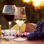 LIncanto del vino a Capriana 150x150 2a MAGNATONDA  de Caoriana si cammina degustando