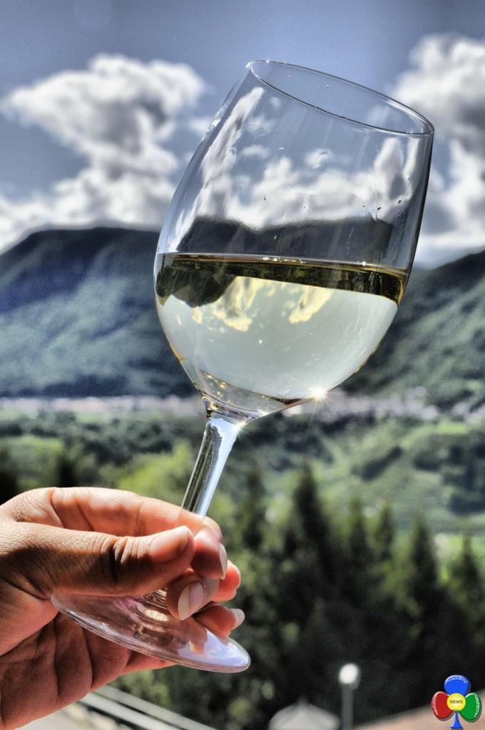 Muller Turgau Cembrani doc Lincanto del vino a Capriana 680x1024 L'incanto del vino a Capriana