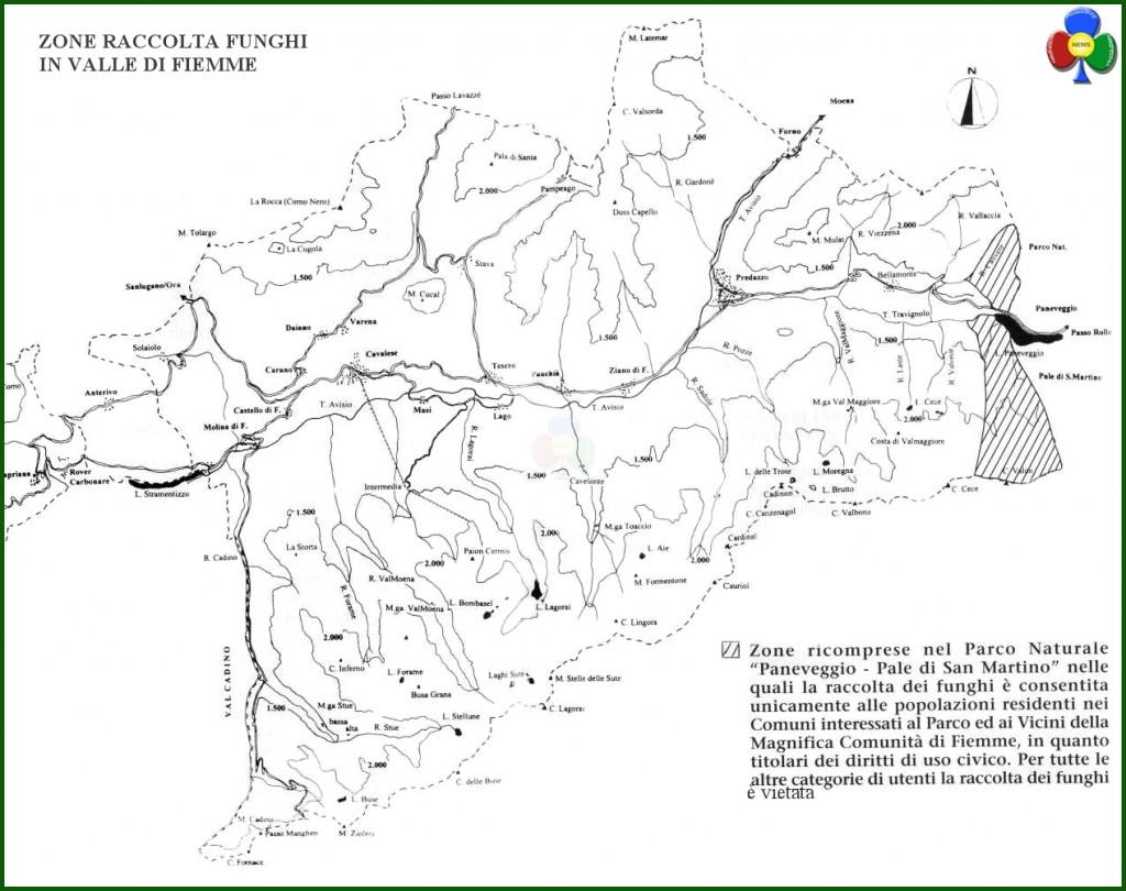 zone raccolta funghi valle di fiemme 1024x810 Trovato in Val di Fiemme un porcino da record: 2.4 kg
