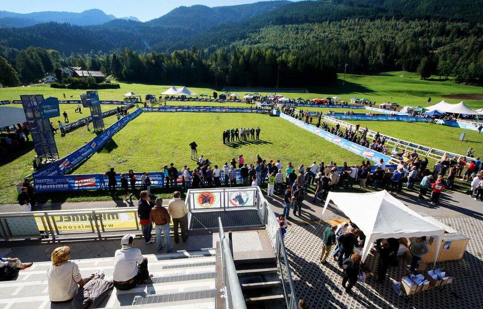 Campionato del Mondo IDC Dobermann 2016